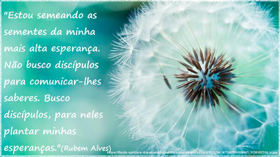 Frases De Rubens Alves Sobre Educação Cv96 Ivango